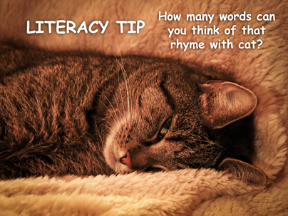 literacy tip january 25