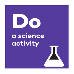 Do a science activity